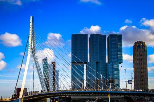 blue rotterdam bridge