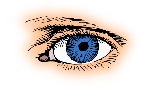 blue eye eyelash