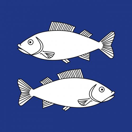 blue opposite fish