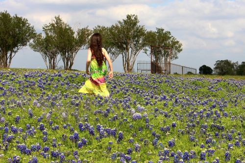 blue bonnets flowers girl