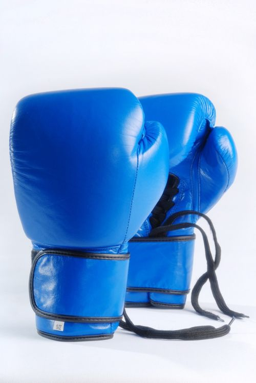 blue boxing gloves isolated on white background fight