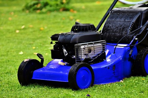 blue lawn mower  lawn mower  lawn mowing