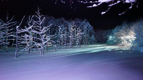 blue pond light up biei