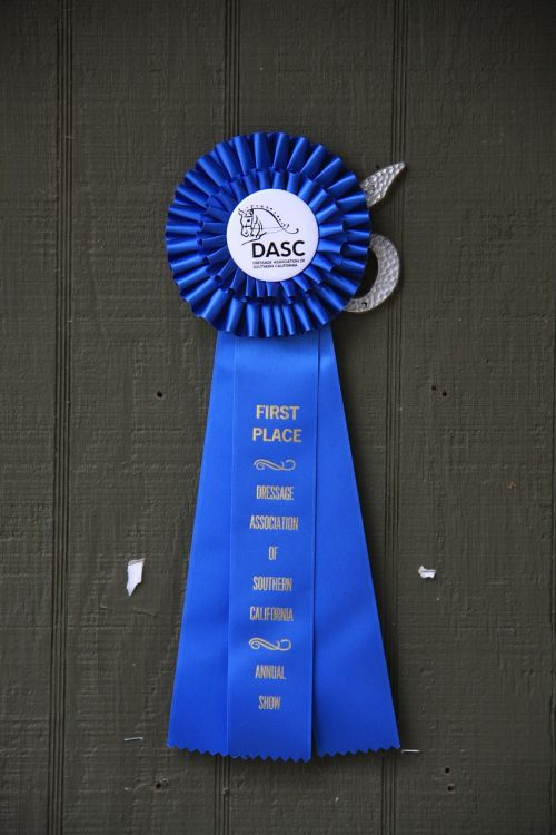 blue ribbon horse show ribbon award