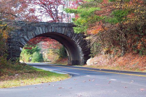 blue ridge parkway fall leaves autumn
