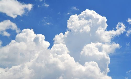 blue sky white cloud look up