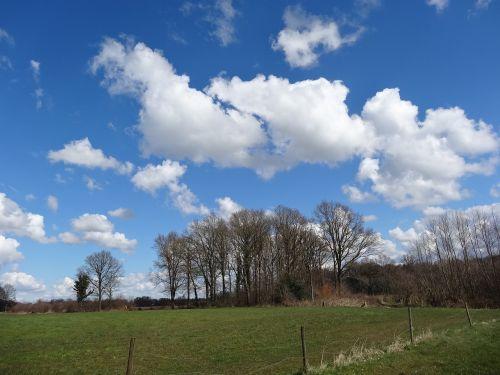 blue sky nature sunny