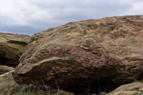Blue Whale Rock