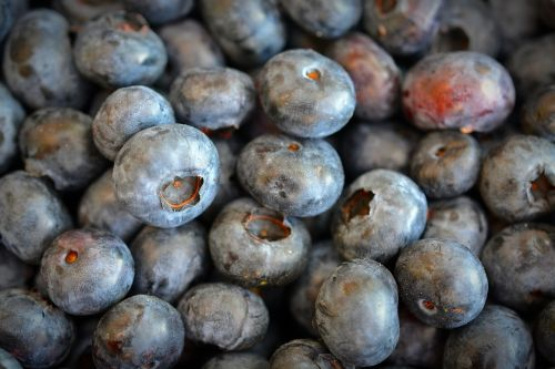 blueberries fruit delicious