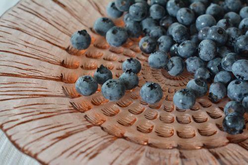 blueberries bilberry berries