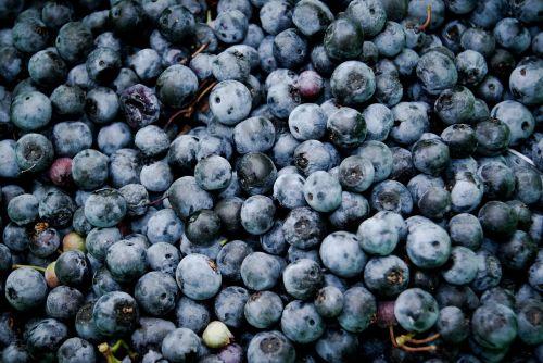 blueberries fruits food