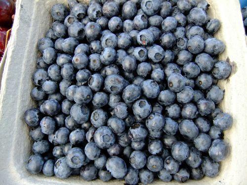 blueberries fruit eat