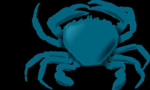 bluecrab crab maryland