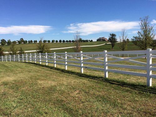bluegrass fence rural