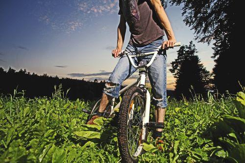 bmx bike forest