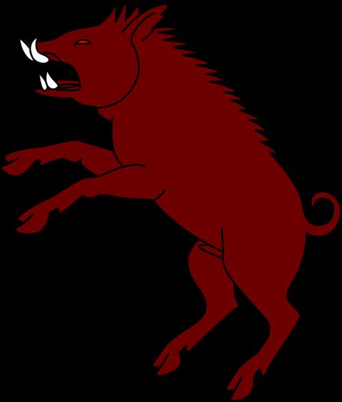 boar pig aggressive