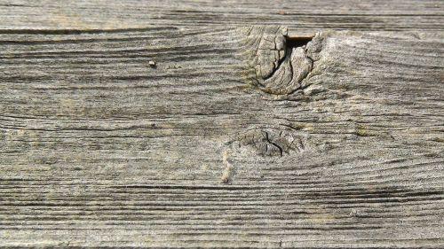 boardood wood texture