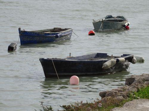 boat barca sea