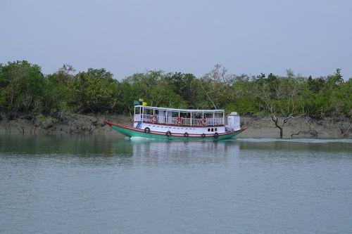 boat river mangroves