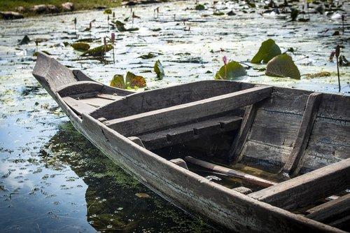boat  wooden boat  rowing boat