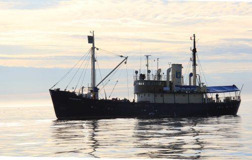 boat stockholm svalbard
