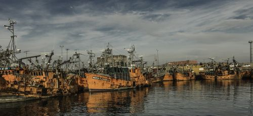 boat port fishing