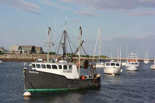 boat ocean harbor