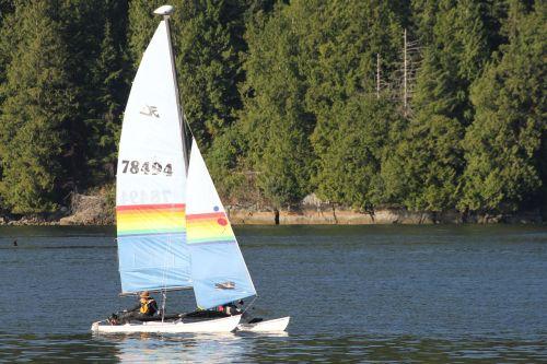 boat sail boat water