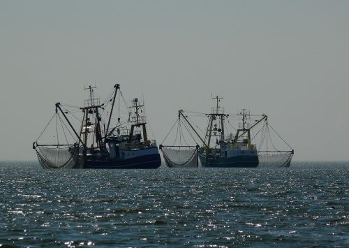 boats fischer fishing boat