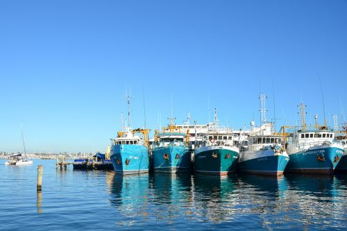 boats harbour moored