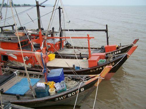 boats chinese boats chinese