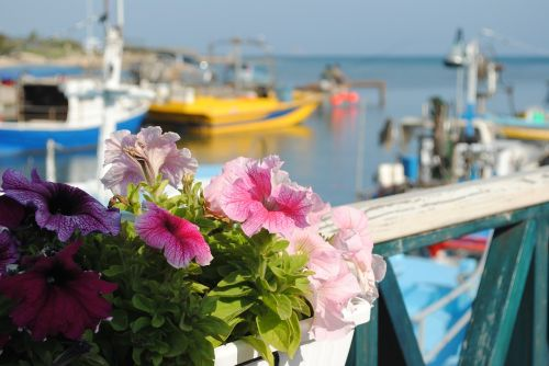 boats moored cyprus sea