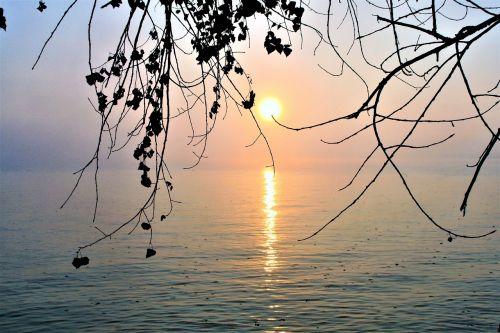 bodensee lake morning