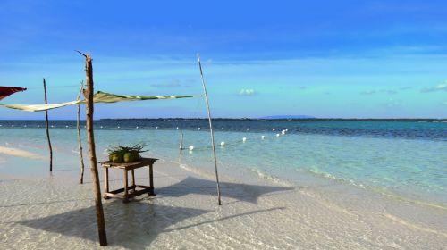 bohol virginia island philippines travel