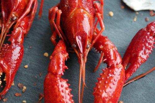 boiled crayfish  eat  food