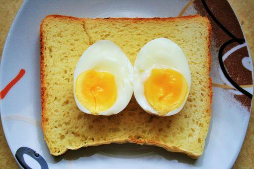 Boiled Egg On Bread