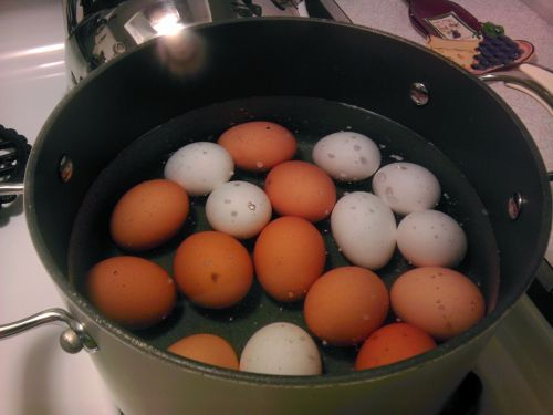 boiling eggs cooking