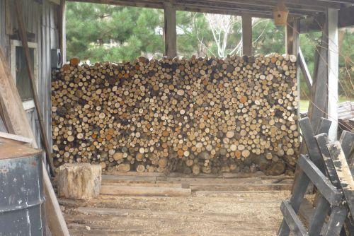 Firewood # 1