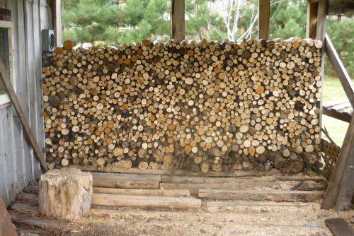 mediena, laidas, malkos, supjaustyti, malkos # 2