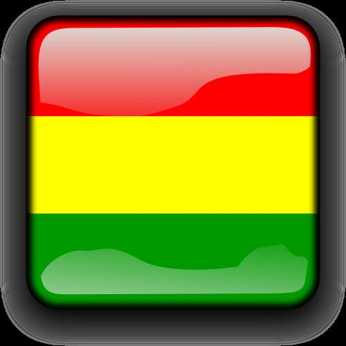 bolivia flag plurinational state of bolivia
