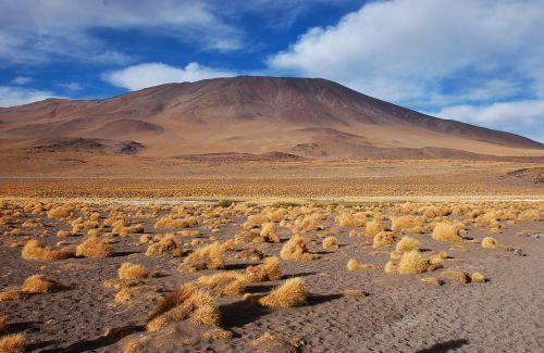 bolivia laguna desert