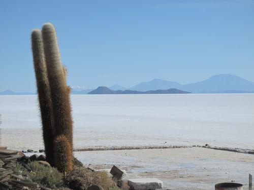 bolivia island salt