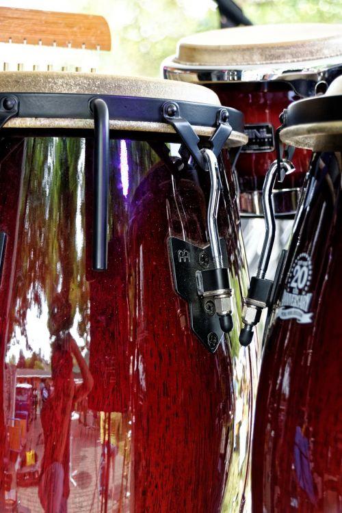 bongos drums music