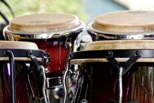bongos drums instrument
