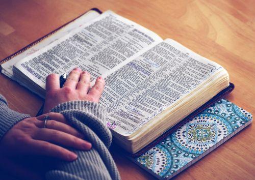 book bible bible study