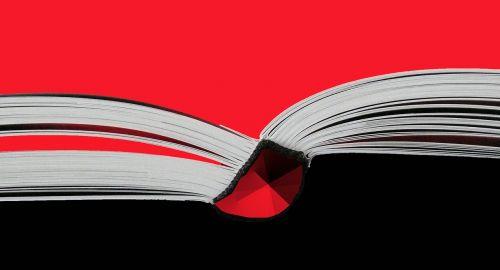book read book picture book