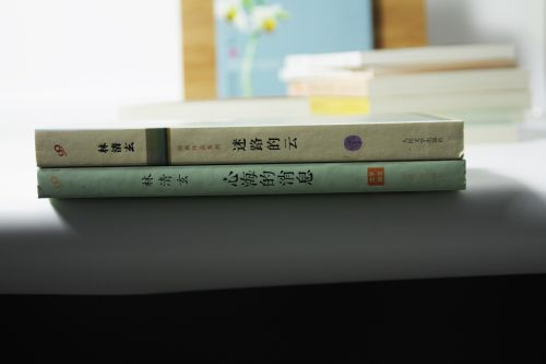 book chinese literature chinese character