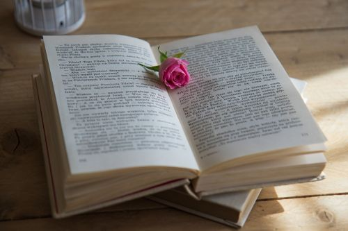 book romantic scene love story