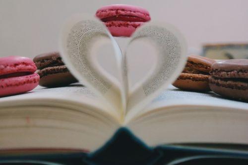 book read study