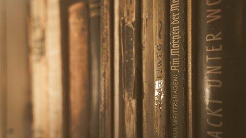 book  books back  book shelf